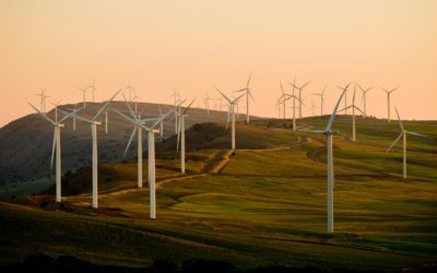 Call for tenders: smart wind farm controller (SWFC)